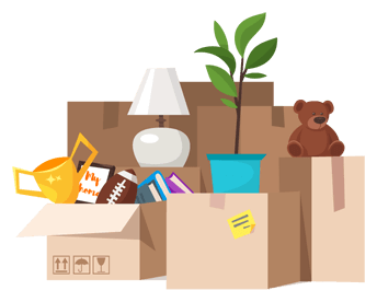 Boxes with a plant, teddy bear, lamp, trophy, foot